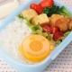 Japanese Bento Box Accessories Karashi Wasabi Mustard Case