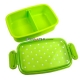 Japanese Microwavable 1 Tier Bento Box Lunch Box Polka Dot Green