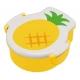 Bento Box Pineapple Design